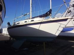 Grifter Sailing Yacht